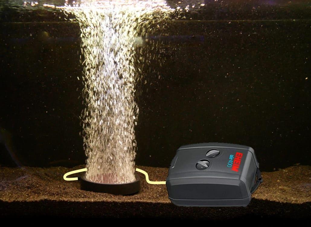sauerstoffversorgung-aquarienbewohner-luftpumpe-aquarium