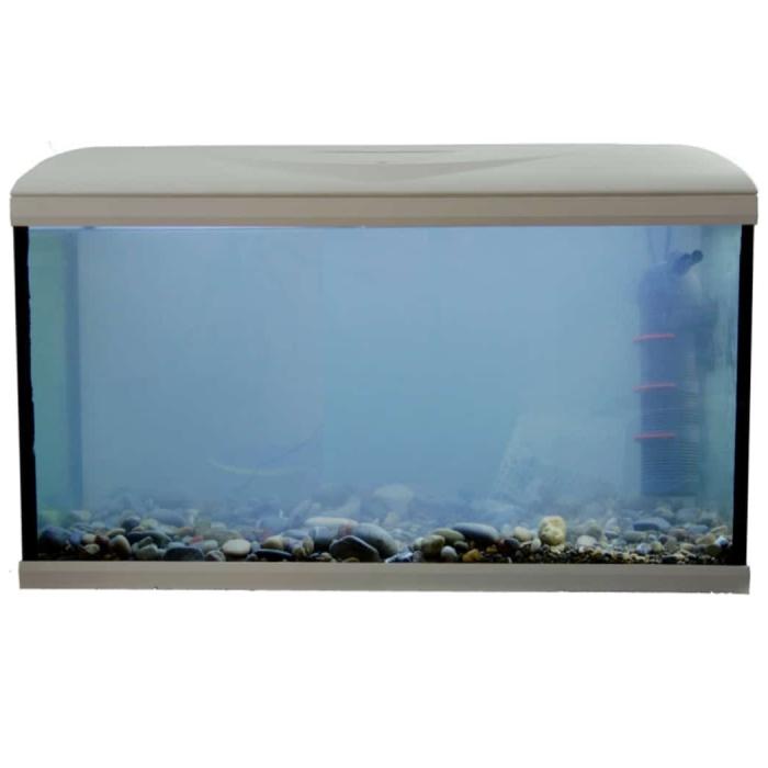 milchiges-aquariumwasser_thumb