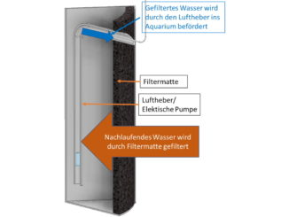 hamburger-mattenfilter-hmf-funktion-aquarium-filter