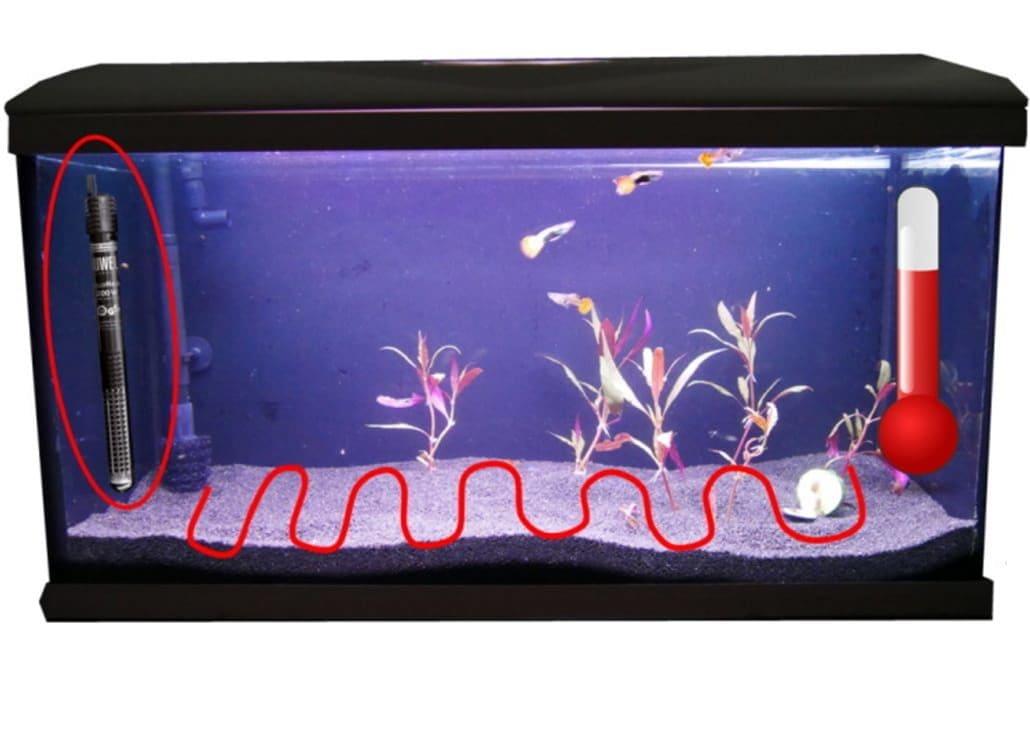 aquarium-heizung