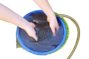 auswaschen-aquariumsand-aquariumkies